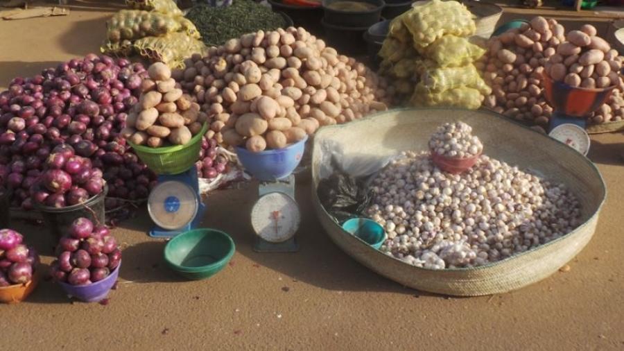 Légume présentés à la foire agricole des maraîchers d'Agadez