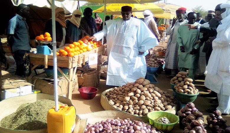 Le Ministre Albadé Abouba visitant les stands de la foire agricole des maraîchers d'Agadez à Niamey