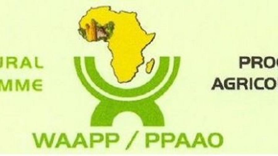 Logo ppaao niger