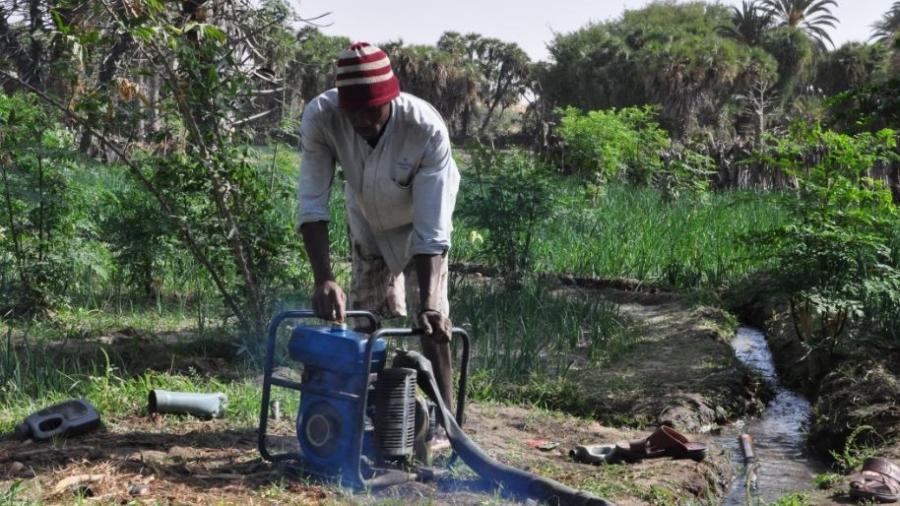 Un producteur nigérien entrain d'irriguer son champ avec une motopompe