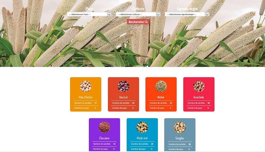 Catalogue digitalisé des semences ICRISAT