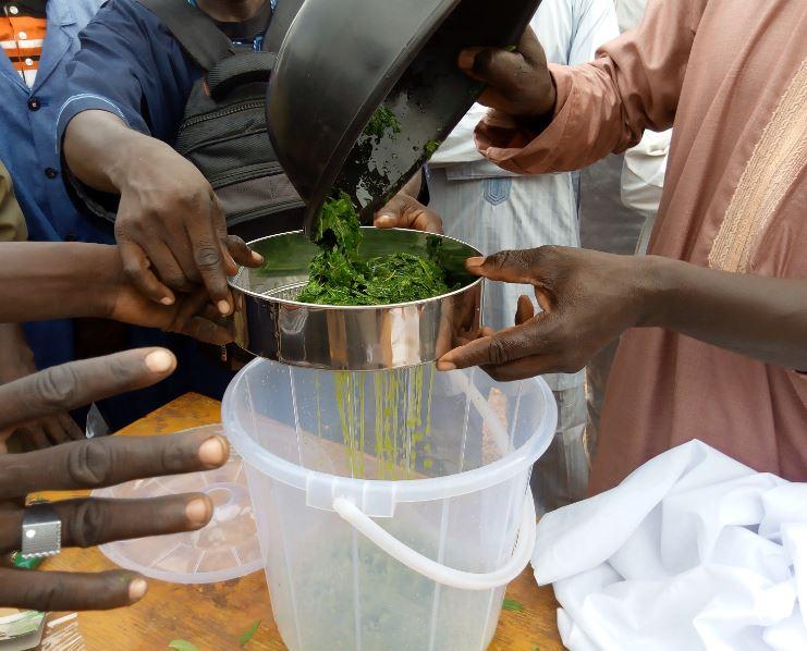 Premier tamisage du broyat de neem