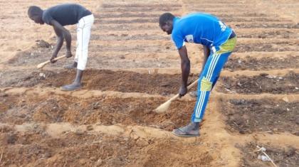 Jeunes travaillant le sol