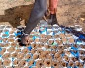 Préparation de poquet pour le semis de moringa