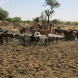 water scarcity in Niger