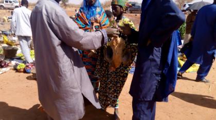 Vente de poulet sur un marché commune de Say