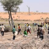 Jeunes et amenagement des terres effets des changements climatiques aux Niger