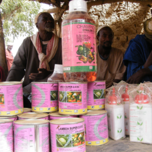 pesticides obsoletes vendus sur un marché villageois