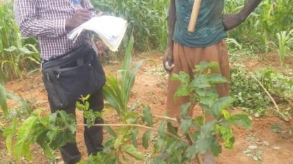 Scéance d'interview entre un enquêteur du cabinet BAC dans un village du département de Gaya région de Dosso
