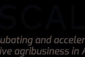 Logo de 2Scale Niger